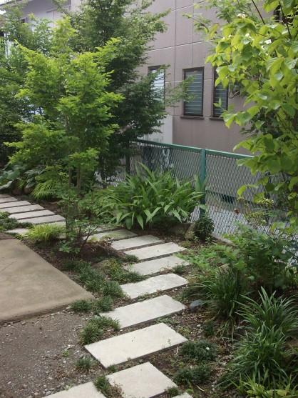 築3年の「呼吸する家」こだわりのお庭が新緑満開